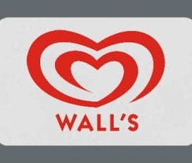 Kwality Walls Swirls Ice cream Parlour Franchise